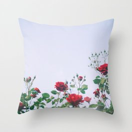 Rise of the Roses Throw Pillow