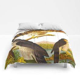Goshawk Bird Comforters