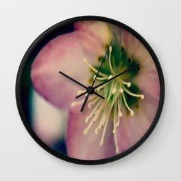 Helleborus  - JUSTART © Wall Clock