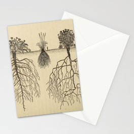 Botanical Roots Stationery Cards