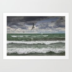 Gulls Flying over the Waves on the Shore in Sturgeon Bay Art Print