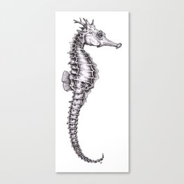 Sea-horse dots Canvas Print