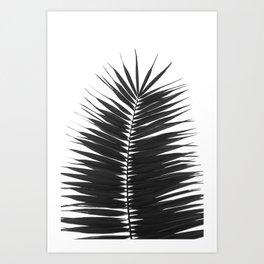 Palm Tree Noir #27 Art Print