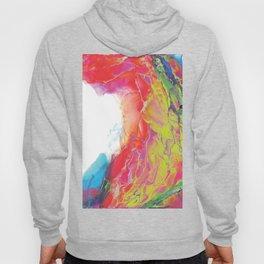 Trippy Rainbow Wave Painting Hoody