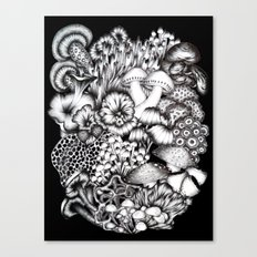 Midnight Mushrooms Canvas Print