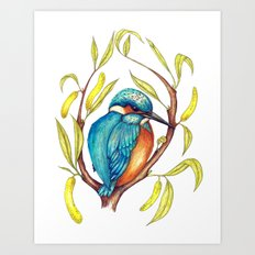 Kingfisher on Willow Art Print