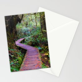 Rainforest Trail, Vancouver Island BC Stationery Cards