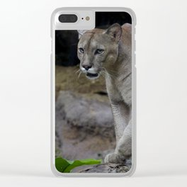 Mountain Lion Clear iPhone Case