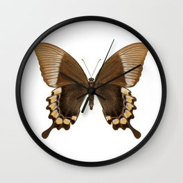 Brown and Gold Swallowtail Butterfly Wall Clock