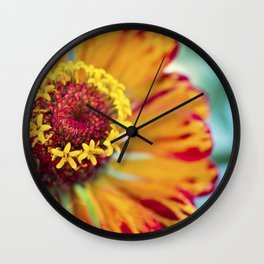 Orange and teal colourful flower photography Wall Clock