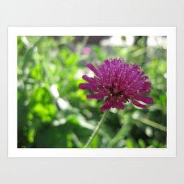 Les Fleurs 4 Art Print