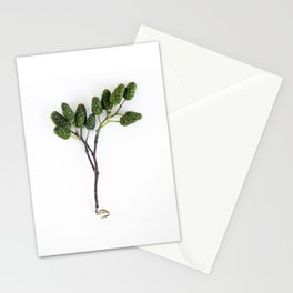 Dragon Eggs Stationery Cards
