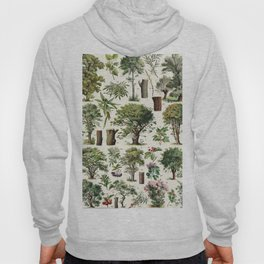 Adolphe Millot - Arbres A - French vintage botanical poster Hoody