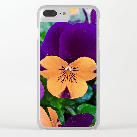 Pansy; Clear and Calm Clear iPhone Case