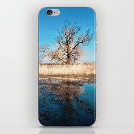 Tree on the Lake iPhone Skin