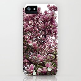 Pinkscape iPhone Case
