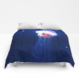 Jelly. Comforters
