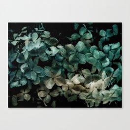 Flowers pattern - v2 Canvas Print