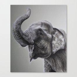 Sumatran Elephant Canvas Print