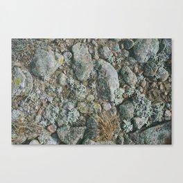 rabbit mountain Canvas Print