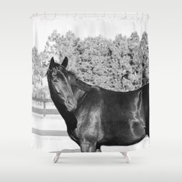 Black & White Bubba Shower Curtain
