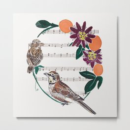 The Lark and the Sparrow and maypop Metal Print