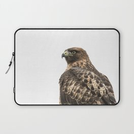 Red-Tailed Hawk 2, Baker Beach, San Francisco, CA Laptop Sleeve