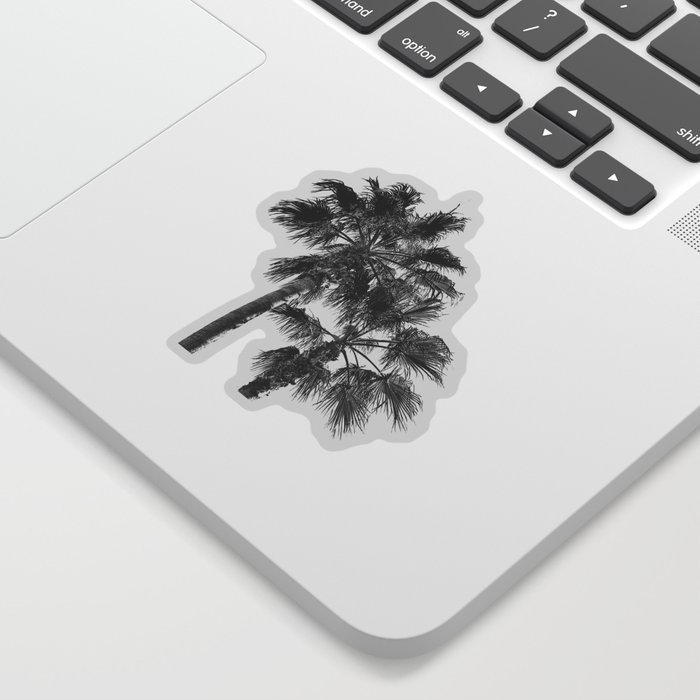 Big Sur Palms | Black and White Palm Trees California Summer Sky Beach Surfing Botanical Photography Sticker