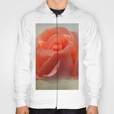 Romantic Peachy Rose Floral Hoody