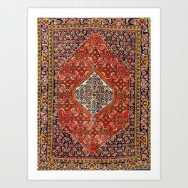 Bidjar Persian Rug Art Print