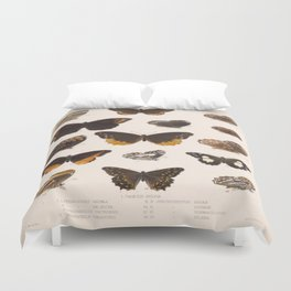Moths And Butterfly Vintage Scientific Hand Drawn Insect Anatomy Biological Illustration Duvet Cover