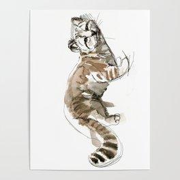 Totem Andean cat (AGA) Poster
