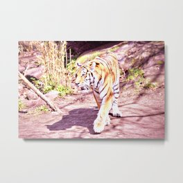 Tiger/Retro Metal Print