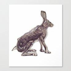 Yucky Bunny Jan 2017 Coloured Canvas Print