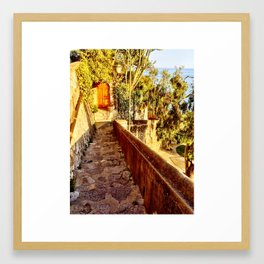 Doors to Amalfi Framed Art Print