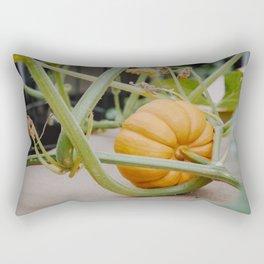Pumpkin Season Is Here Rectangular Pillow