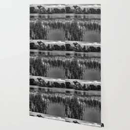 Landscape photograph of Pebley Island in black and white Wallpaper