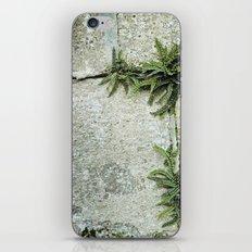 echapée de vert iPhone Skin