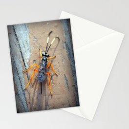 Banded Caterpillar Parasite Wasp Stationery Cards