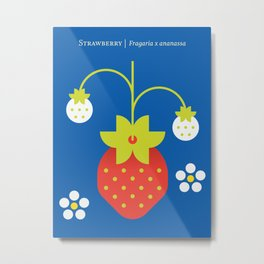 Fruit: Strawberry Metal Print