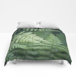 Where the Redwood Fern Grows Comforters