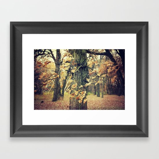Wilted Beauty Framed Art Print