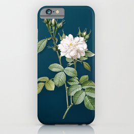 Vintage Blooming Autumn Damask Rose Botanical Illustration on Teal iPhone Case