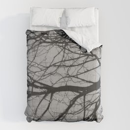 tree after the rain black and white Comforters