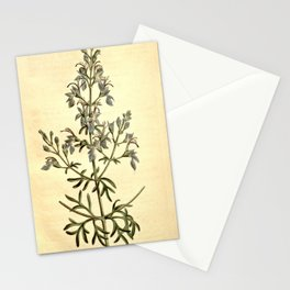 Flower 1279 teucrium orientale Great flowered Germander10 Stationery Cards