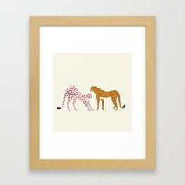 Cheetas Framed Art Print