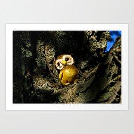 Harvey the Owl I Art Print