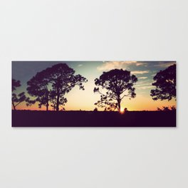 Panorama Sunset with Cypress Trees Canvas Print