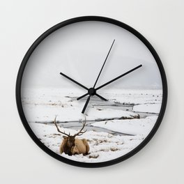 Elk Resting in the Snow Wall Clock