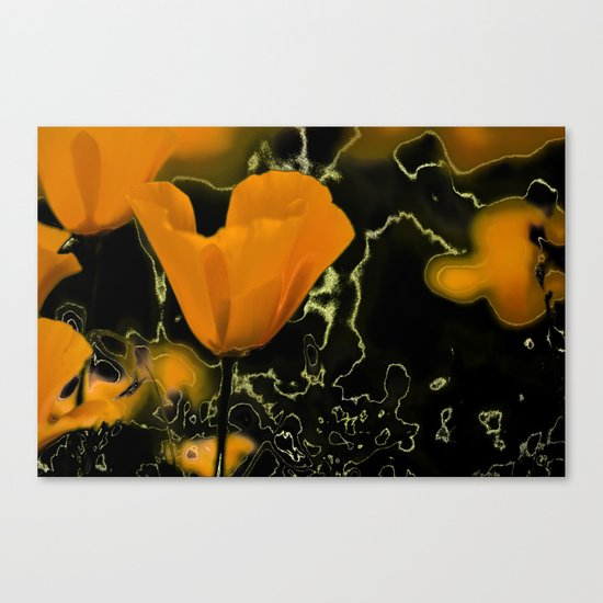 Orange poppy with abstract Canvas Print